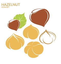 Hazelnut Icon set vector image