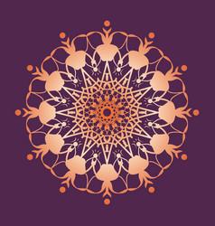 Mandala pattern floral round decorative symbol vector