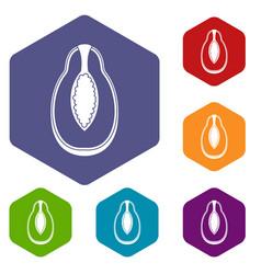 Papaya fruit icons set hexagon vector