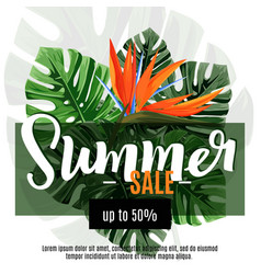 Sale banner poster with jungle palm leaves vector