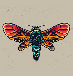 vintage colorful flying death head moth vector image
