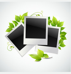 Photo frames with green leaves vector image
