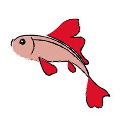 Fish koi chinese animal asian decorative image vector