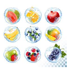 Big collection icons fruit in a water splash vector
