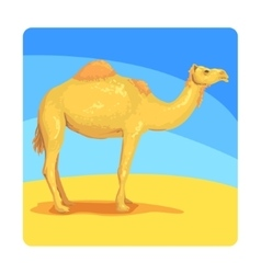 Camel Famous Touristic Attraction Of United Arab vector image