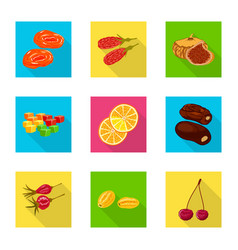 fruit and dried symbol set vector image