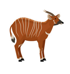 hoofed animal with horns vector image