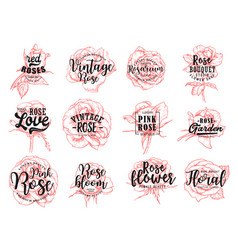 red roses flower vintage boutique sketch lettering vector image
