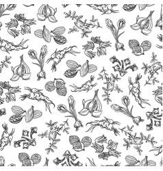 Spice black and white seamless pattern vector