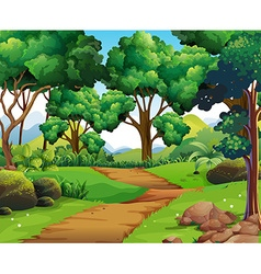 Nature scene with hiking track and trees vector image vector image