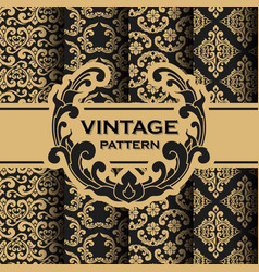 set of vintage flourishes vine seamless pattern vector image