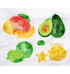 Exotic fruit watercolor mango avocado carambola vector image vector image