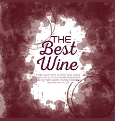Best wine label vector