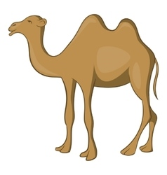 Camel icon cartoon style vector