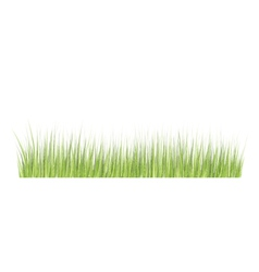 Grass border in grunge style vector image