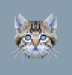 Pixel siberian cat face vector