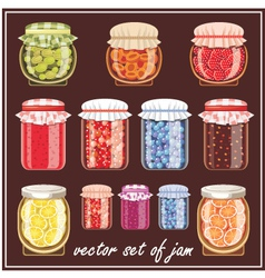 Set of jam vector