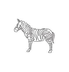 single continuous line drawing elegant zebra vector image