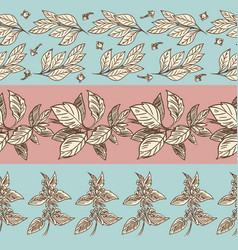 spices seamless pattern collection vector image