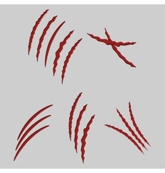 animal claws vector image