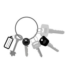 key set with keyring vector image vector image