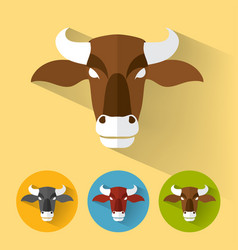 buffalo portrait with flat design vector image