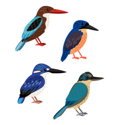 small colored birds vector image