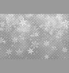 snow transparent background christmas snowflakes vector image