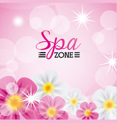 Spa zone vector
