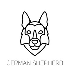 German shepherd linear face icon isolated outline vector