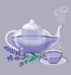 Teapot and cup herbal lavender tea vector