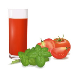 a glass of tomato juice vector image