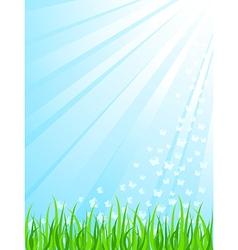 sunrays vector image