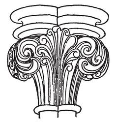 Capital lotus vintage engraving vector