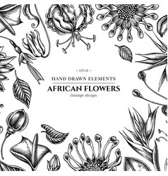 Floral design with black and white african daisies vector