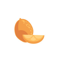 hole and cut lemon fruit in flat style isolated on vector image