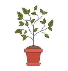 Plant inside pot design vector
