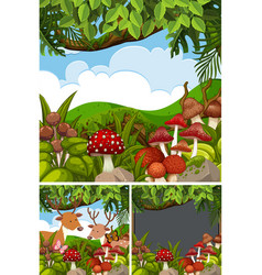three forest scenes with deers and mushrooms vector image