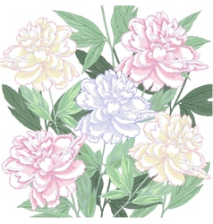 Background with pink and white peony vector image vector image