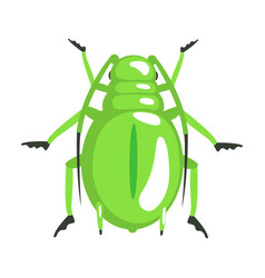 green longhorn beetle colorful cartoon character vector image vector image