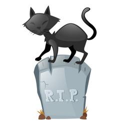 Black cat on gravestone vector