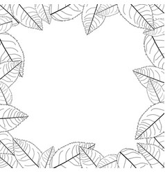 Camellia leaves outline frame border vector
