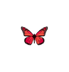 realistic pink-wing element vector image
