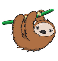 Sleeping sloth on white background vector