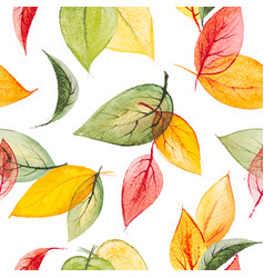 watercolor seamless print with autumn vector image