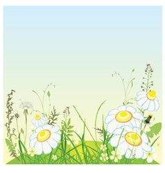 Green landscape flowers and grass meadow vector image vector image
