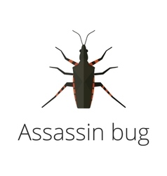 Assassin bug insect vector image
