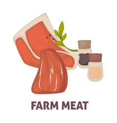 farm meat with salt and paper promotional poster vector image