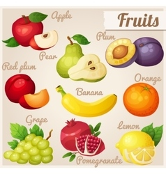 Set of cartoon food icons Fruits vector image