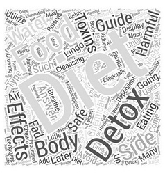 body cleansing detox diet guide when Word Cloud vector image vector image